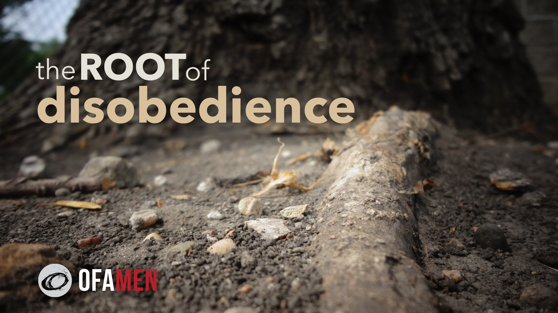 The Root of Disobedience